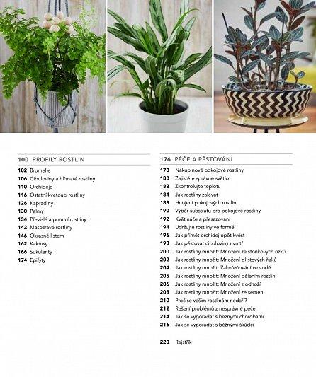 Náhled Pokojové rostliny v praxi