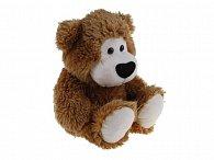 Sedící medvěd hnědý