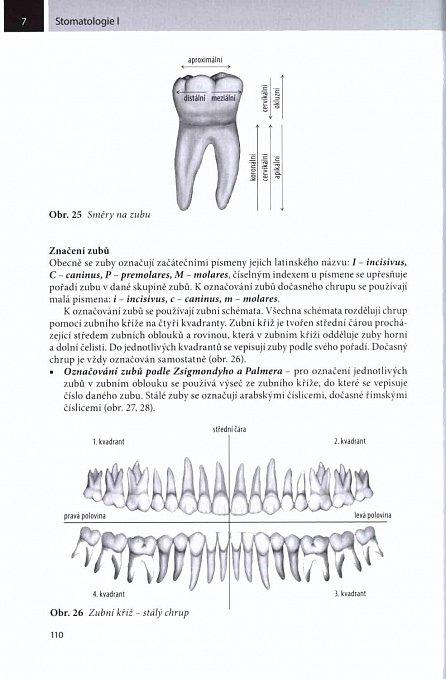 Náhled Stomatologie I pro SZŠ a VOŠ