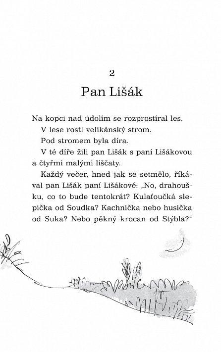 Náhled Fantastický pan Lišák