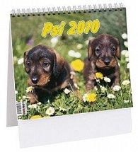Psi 2010 - stolní kalendář