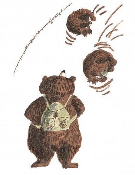 Náhled Co se zdá medvědům