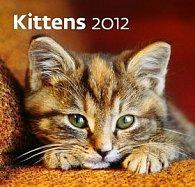 Kalendář nástěnný 2012 - Kittens