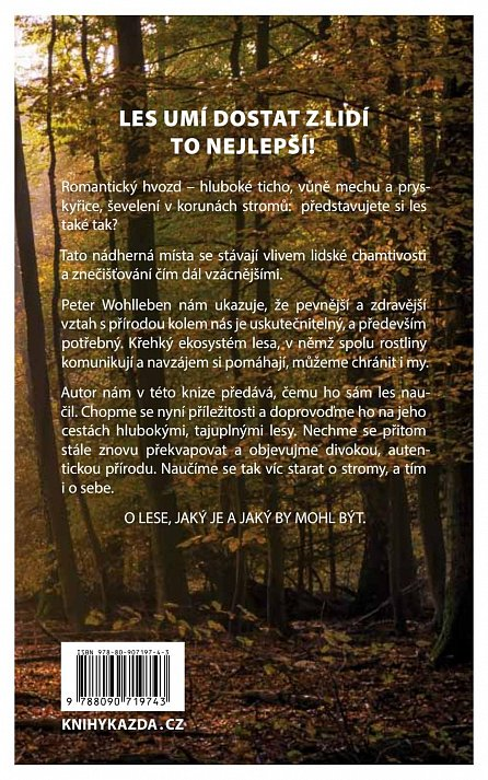 Náhled Moudrost lesa