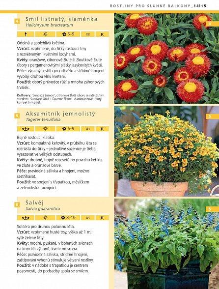 Náhled Rostliny pro stinné a slunné balkony