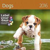 Kalendář nástěnný 2016 - Dogs