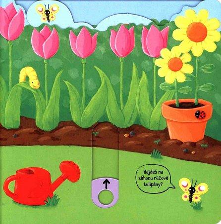Náhled Jak to žije na zahradě