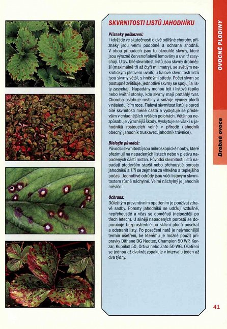 Náhled Atlas chorob a škůdců ovoce, zeleniny a okrasných rostlin