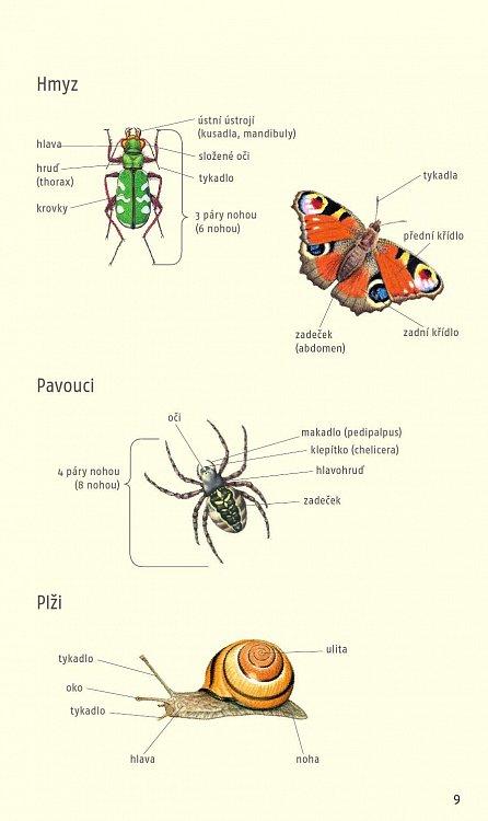 Náhled Atlas živočichů a rostlin - Nový průvodce přírodou