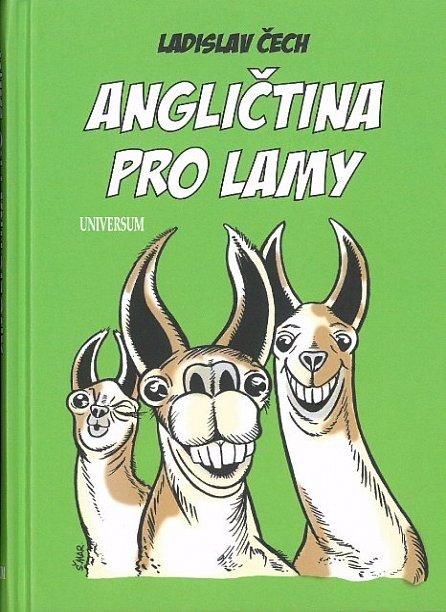 Náhled Angličtina pro lamy