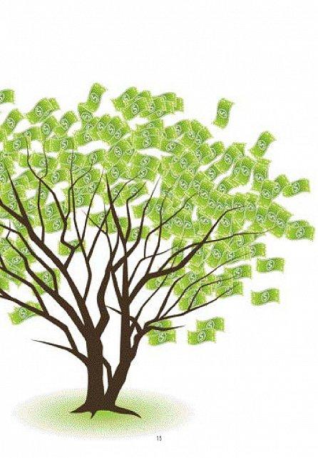 Náhled Jak získat bohatství - Zasloužíte si bohatství a dokážete ho k sobě přivábit