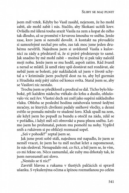 Náhled Ve stínu apokalypsy - Antologie české fantastiky