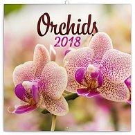 Kalendář poznámkový 2018 - Orchideje, 30 x 30 cm