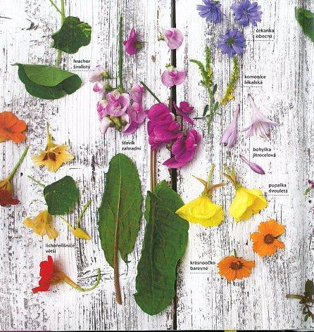 Náhled Květinová kuchařka - Jedlé kvítí a býlí na vaření i zdobení