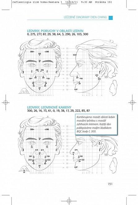 Náhled Reflexologie obličeje: dien chan
