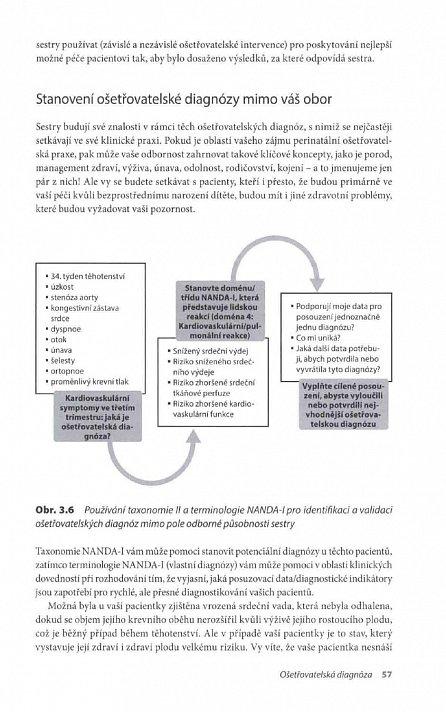 Náhled Ošetřovatelské diagnózy - Definice a klasifikace 2015–2017
