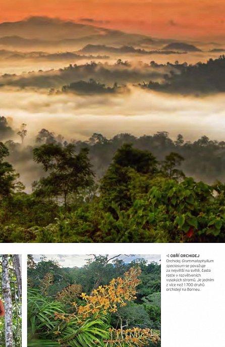 Náhled Přírodní divy naší planety