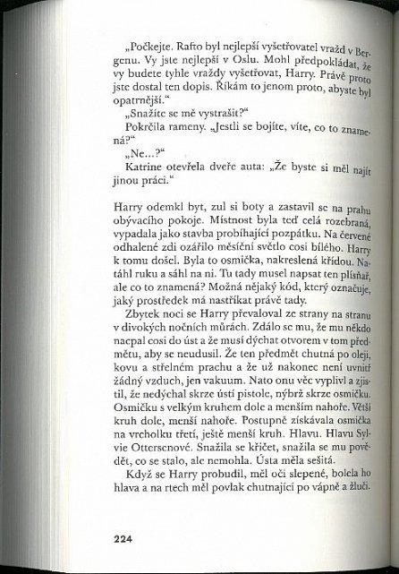 Náhled Sněhulák (paperback)