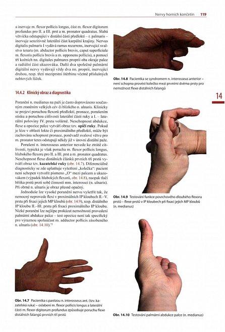 Náhled Chirurgie hlavových a periferních nervů s atlasem přístupů