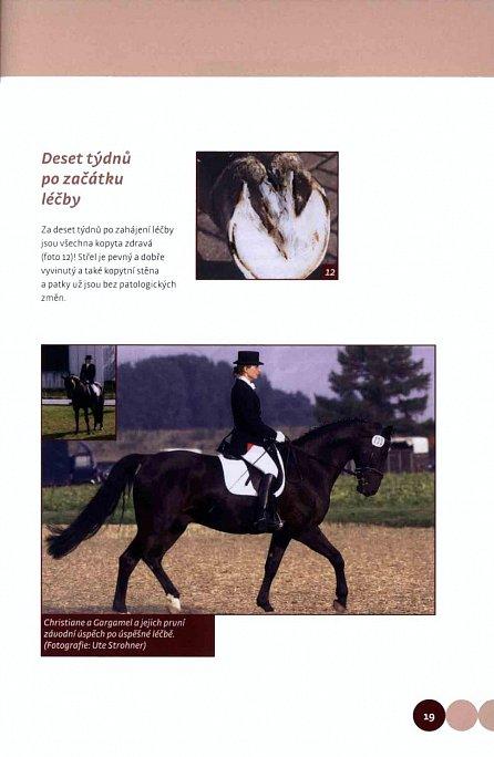 Náhled Když koně mají problémy - Celostní léčba koní v praxi