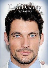 Kalendář 2017 - DAVID GANDY
