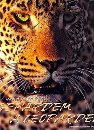 Jaké je to být Gepardem a Leopardem