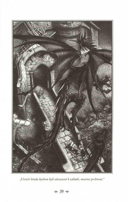 Náhled Kroniky drakologů 4 - Dračí věštba
