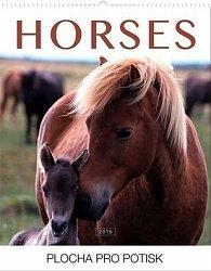 Koně Praktik - nástěnný kalendář 2016