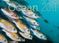Oceán 2011 - nástěnný kalendář
