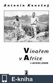 Vinařem v Africe i leckde jinde (E-KNIHA)