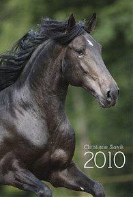 Diář 2010 Koně