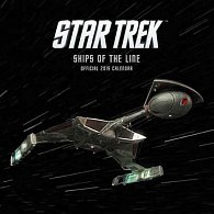 Kalendář 2015 - Star Trek/Ships (305x305)