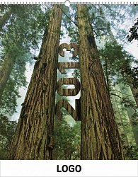 Kalendář 2013 - Lesy praktik, 30 x 34 cm