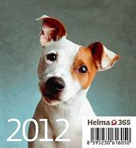 Kalendář stolní 2012 - Mini Puppies