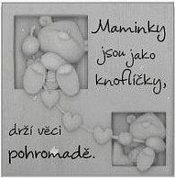 """Magnetka s Fizzy Moonem """"Maminky jsou jako knoflíčky"""""""