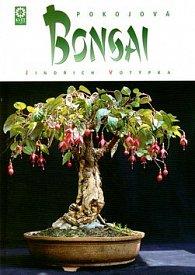 Pokojová bonsai