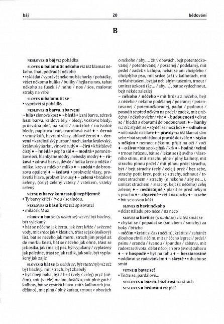Náhled Slovník české frazeologie a idiomatiky 5 Onomaziologický slovník