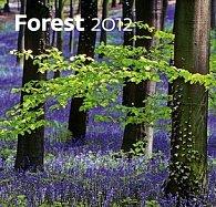 Kalendář nástěnný 2012 - Les