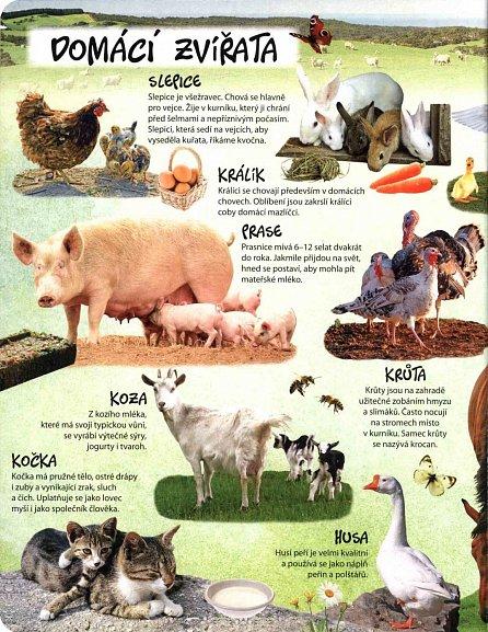 Náhled Svět zvířat