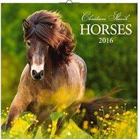 Kalendář nástěnný 2016 - Koně - Christiane Slawik, poznámkový  30 x 30 cm