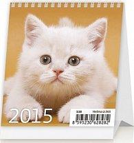 Kalendář stolní 2015 - Mini Kittens