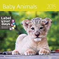 Kalendář nástěnný 2015 - Baby Animals