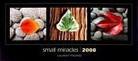 Small Miracles-Laurent Pinsard 2008 - nástěnný kalendář