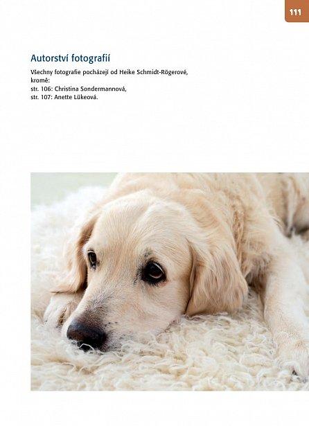 Náhled Hlavolamy pro psy