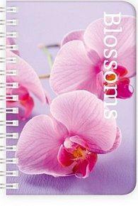 Diář Twins 2012 - Frosted týdenní M - Blossoms
