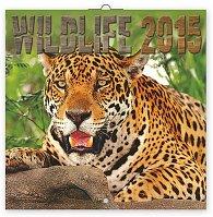 Kalendář 2015 - Wildlife - nástěnný (GB, DE, FR, IT, ES, NL)