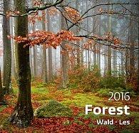 Kalendář nástěnný 2016 - Les - Forest