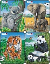 Puzzle MINI - Koala,slon,tygr,panda/8 dílků (4 druhy)