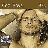 Kalendář nástěnný 2013 - Cool Boys