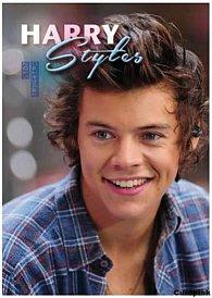 Kalendář 2015 - Harry Styles/One Direction (297x420) A3
